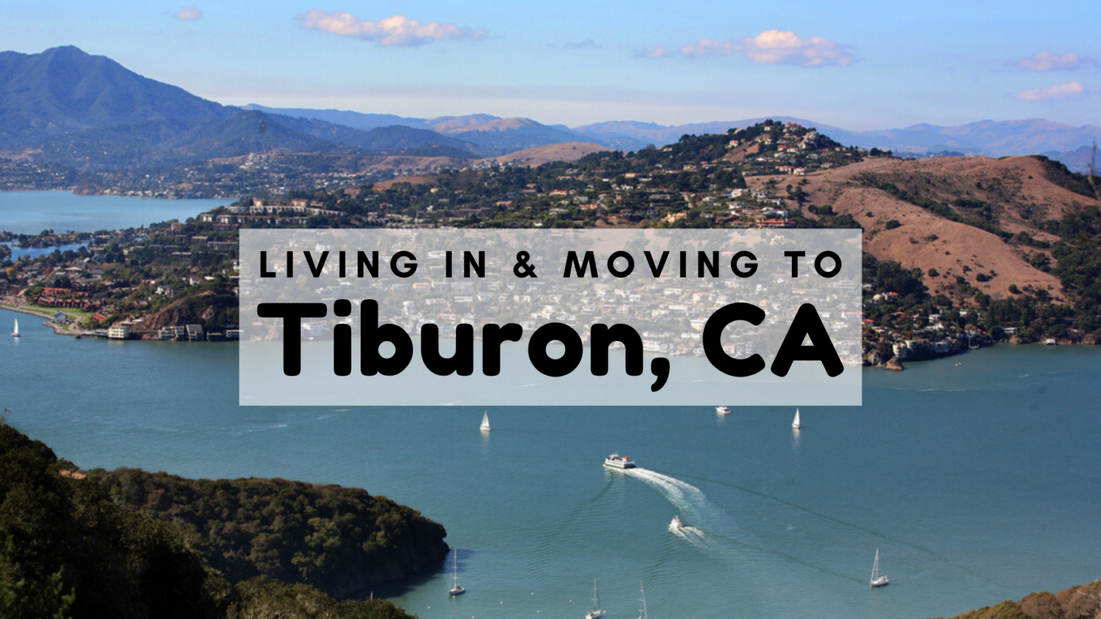 Tiburon Ca 2020 The Complete Living In Moving To Tiburon Guide Mentors Moving Storage